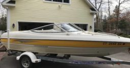 19 Foot 2004 Sting Ray 185 LS